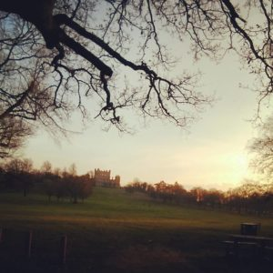 Evening run around Wollaton Hall home running WollatonHall Nottingham Nottshellip